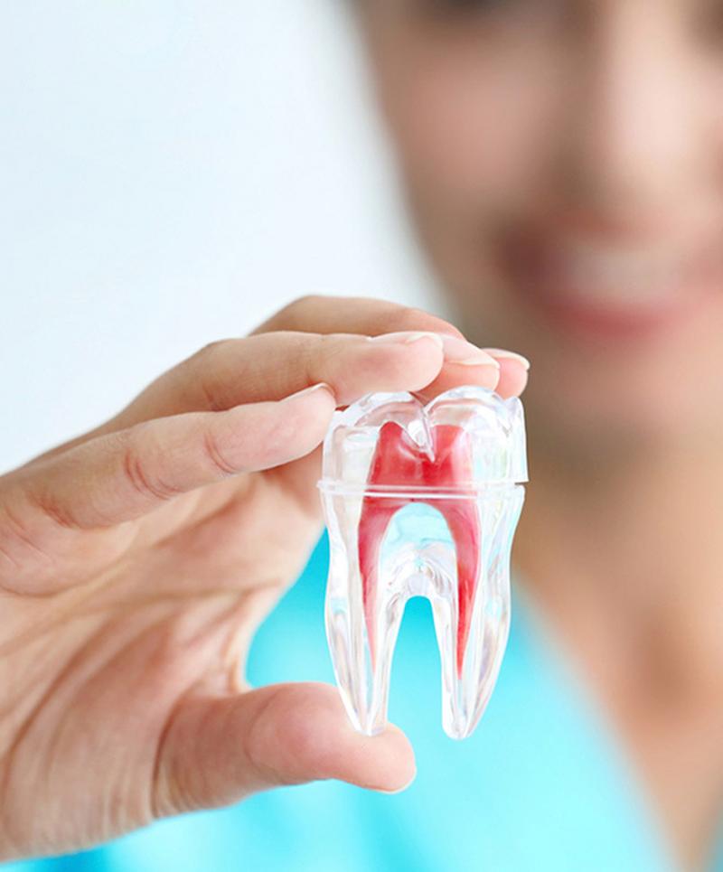 Endodontia na Vila Madalena